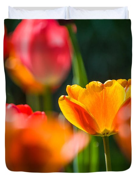 Duvet Cover featuring the photograph Yellow And Red by Trevor Chriss