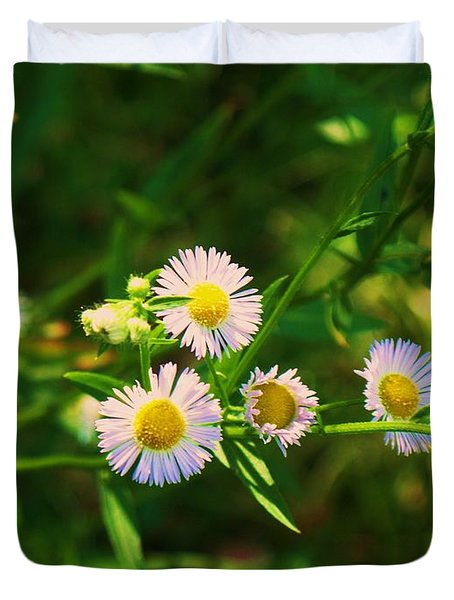 Yellow And White Dasies Duvet Cover by Eric  Schiabor