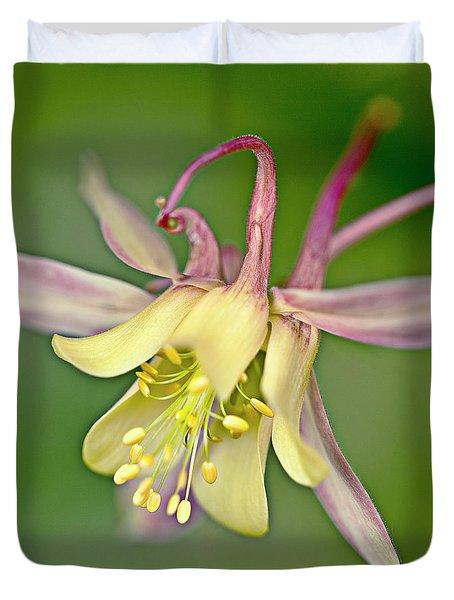 Yellow Aquilegia Bloom Duvet Cover by Heiko Koehrer-Wagner