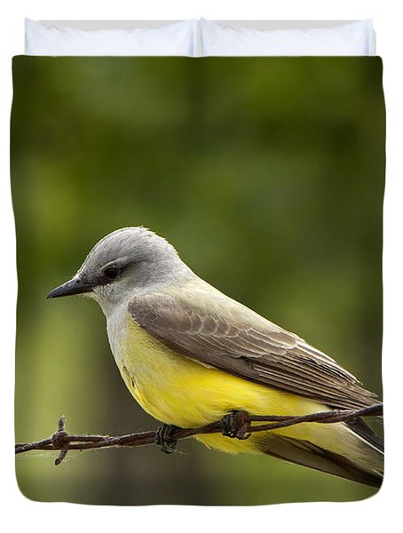 Yellow-bellied Fence-sitter Duvet Cover