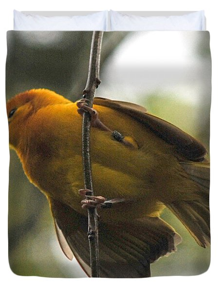 Yellow Bird Duvet Cover by Steve Archbold