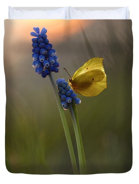 Yellow Butterfly On Grape Hyacinths Duvet Cover