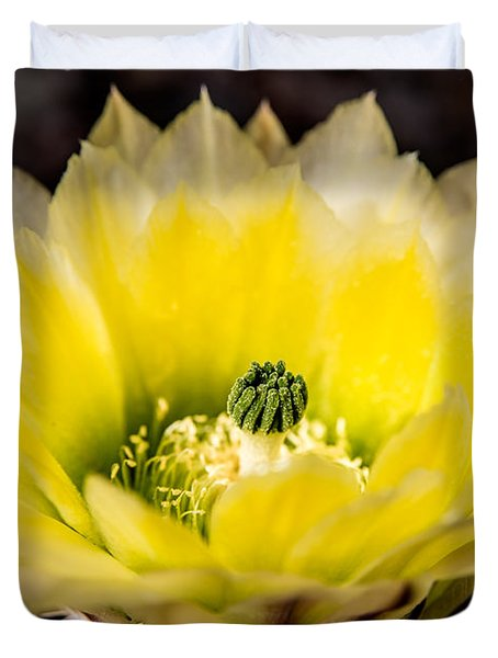 Yellow Cactus Flower Duvet Cover by  Onyonet  Photo Studios