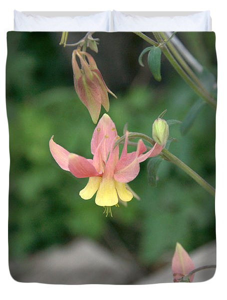 Yellow Columbine 2 Duvet Cover