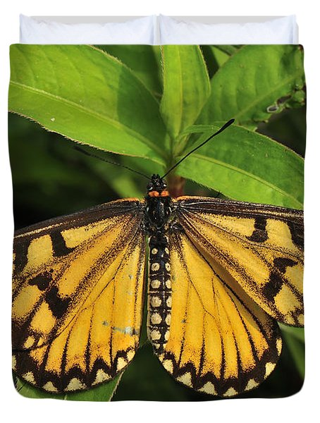Yellow Coster Butterfly Manas Np India Duvet Cover