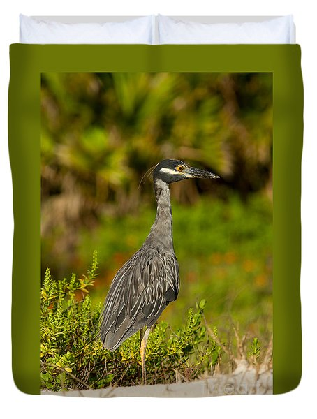 Yellow Crowned Night Heron Dune Watch Duvet Cover by Paul Rebmann