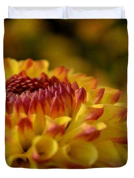 Yellow Dahlia Red Tips Duvet Cover by Scott Lyons