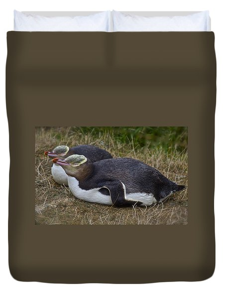 Sleeping Yellow Eyed Penguins Duvet Cover
