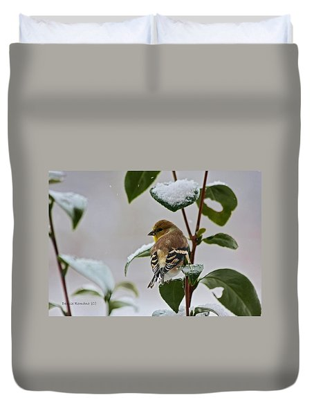 Goldfinch On Branch Duvet Cover