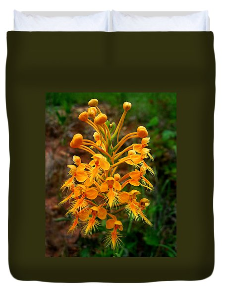 Wild Yellow Fringed Orchid Duvet Cover by William Tanneberger