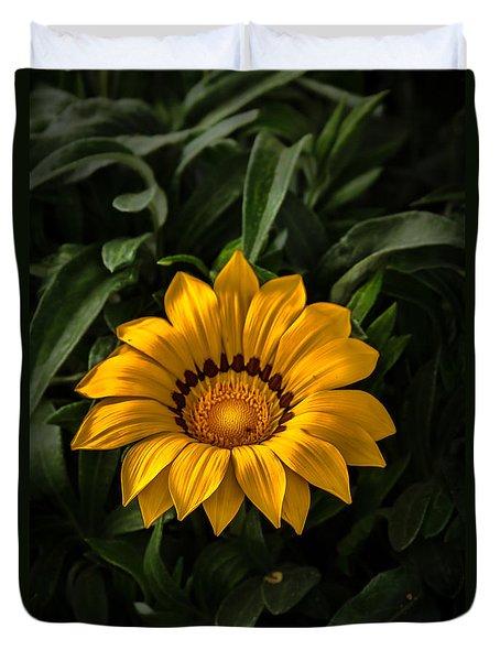 Yellow Gazania Duvet Cover by Robert Bales