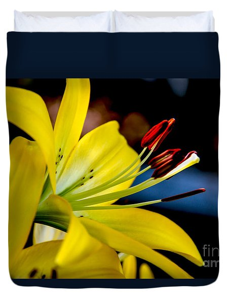 Yellow Lily Anthers Duvet Cover by Robert Bales
