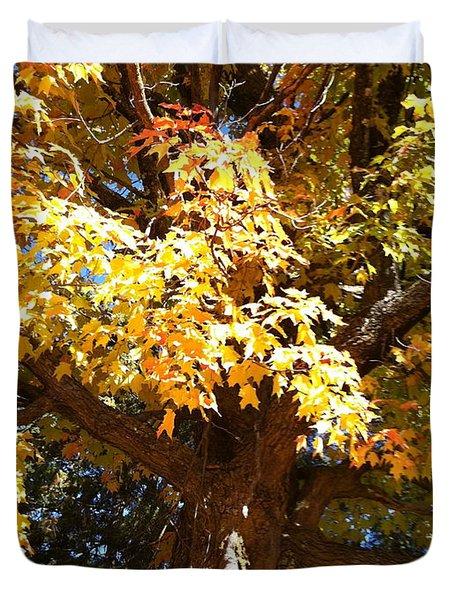Yellow Maple Leaves  Duvet Cover