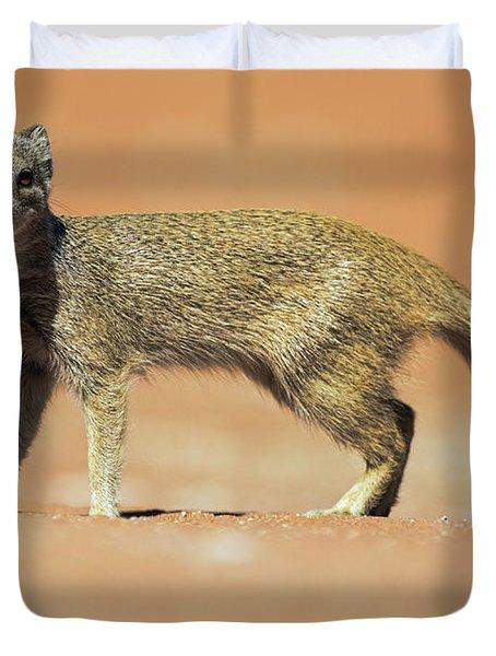 Yellow Mongoose In Kalahari Desert Duvet Cover