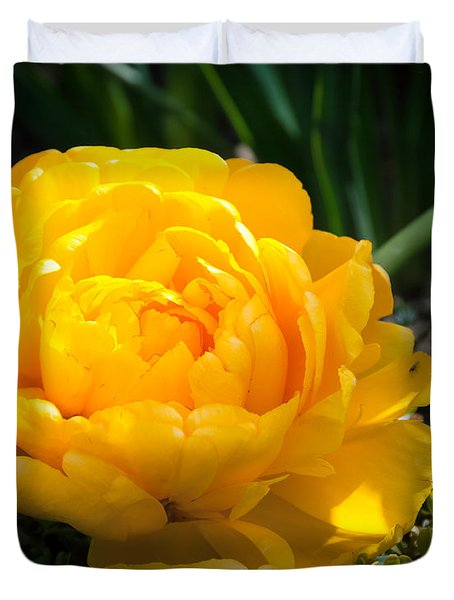 Duvet Cover featuring the photograph Yellow Rose by Dee Dee  Whittle