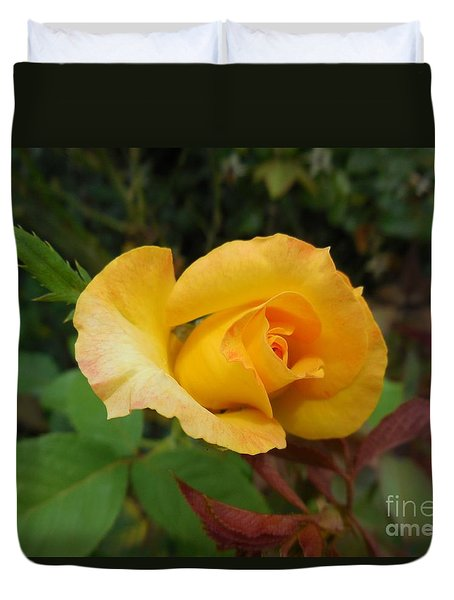 Yellow Rose Of Texas Duvet Cover by Eloise Schneider