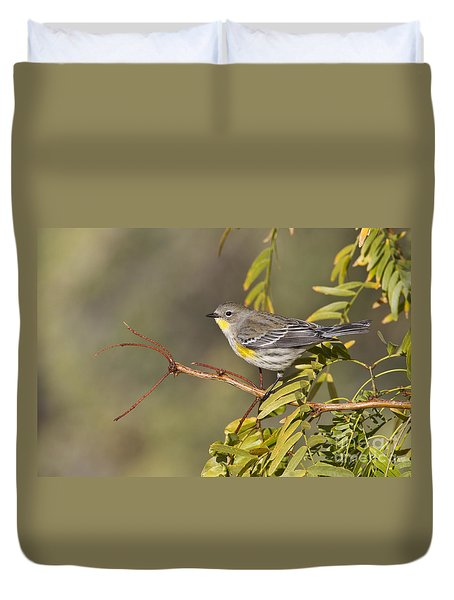 Yellow Rumped Warbler Duvet Cover