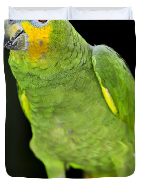 Yellow-shouldered Amazon Parrot Duvet Cover by Elena Elisseeva