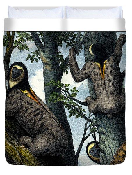 Yellow Throated Sloth Duvet Cover by Splendid Art Prints