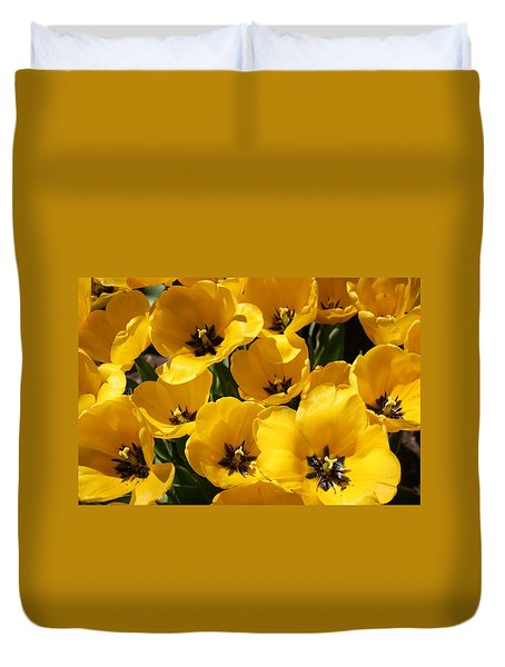 Duvet Cover featuring the photograph Golden Tulips In Full Bloom by Dora Sofia Caputo Photographic Art and Design