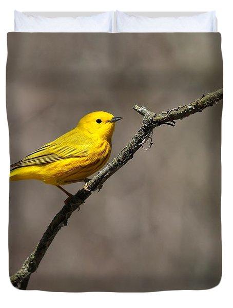 Yellow Warbler Duvet Cover
