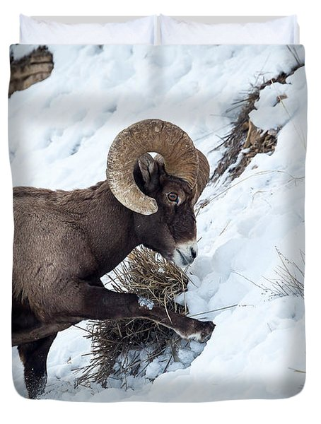 Yellowstone Bighorn Duvet Cover