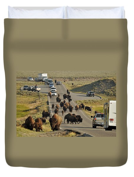 Yellowstone Bison Jam Duvet Cover