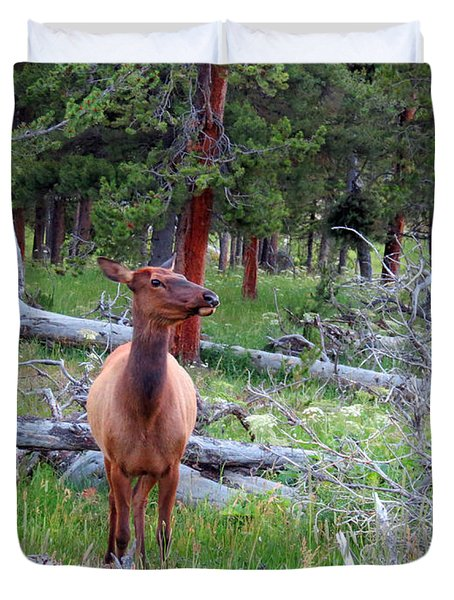 Yellowstone Moments. Doe Duvet Cover