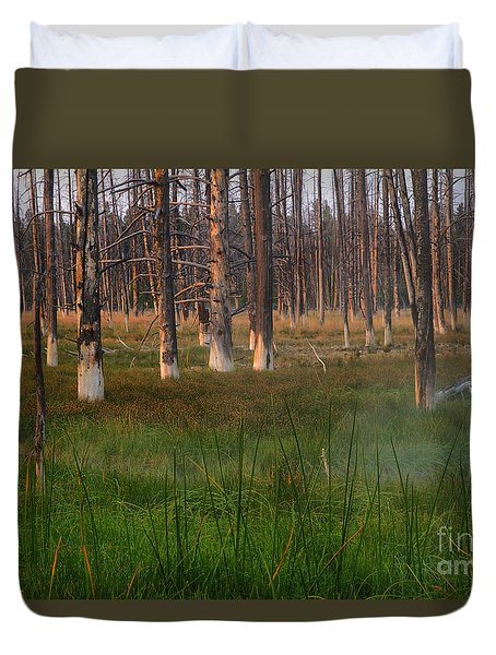 Yellowstone Mysterious Morning Duvet Cover by Teresa Zieba