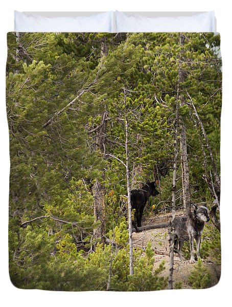 Yellowstone Wolves Duvet Cover by Belinda Greb