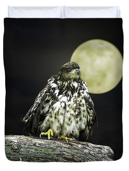 Duvet Cover featuring the photograph Young Bald Eagle By Moon Light by John Haldane
