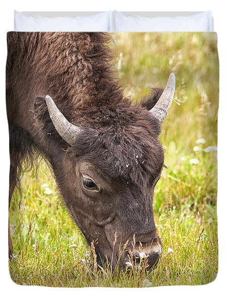 Young Bison Duvet Cover by Belinda Greb