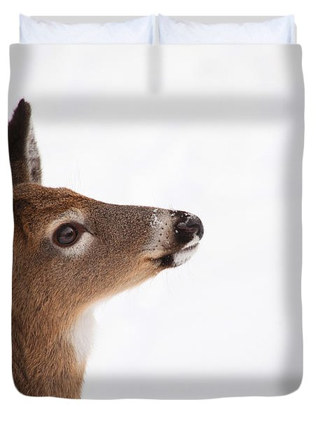 Young Deer In Winter Duvet Cover by Karol Livote