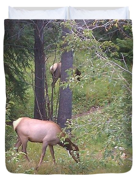 Duvet Cover featuring the photograph Young Elk Grazing by Fortunate Findings Shirley Dickerson
