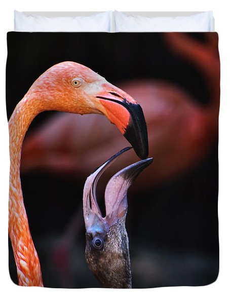 Young Flamingo Feeding Duvet Cover