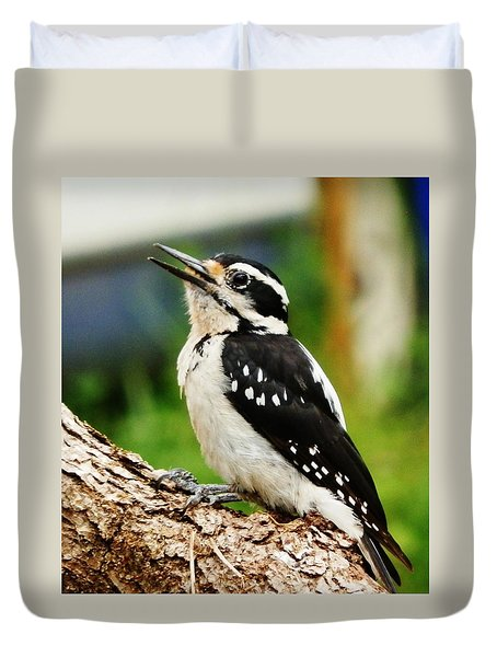 Duvet Cover featuring the photograph Young Hairy Woodpecker by VLee Watson