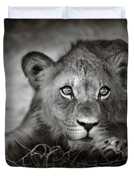 Young Lion Portrait Duvet Cover