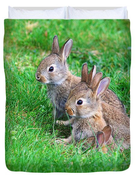 Duvet Cover featuring the photograph Young Rabbits by Nick  Biemans