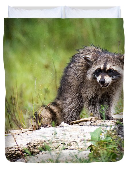 Young Raccoon Duvet Cover