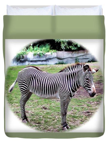 Duvet Cover featuring the photograph Zebra 1 by Dawn Eshelman