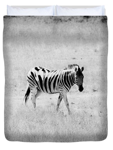 Zebra Explorer Duvet Cover by Melanie Lankford Photography