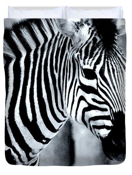 Zebra Duvet Cover by Kathleen Struckle