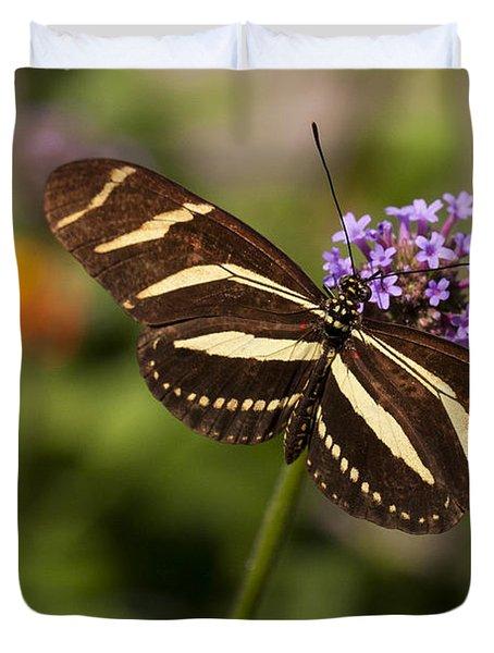 Zebra Longwing Butterfly Duvet Cover by Adam Romanowicz