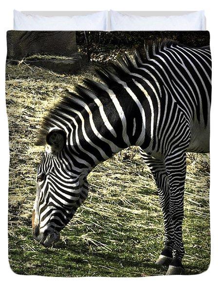Zebra Striped Fourlegger Duvet Cover by LeeAnn McLaneGoetz McLaneGoetzStudioLLCcom