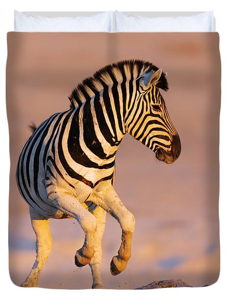 Zebras Jump From Waterhole Duvet Cover