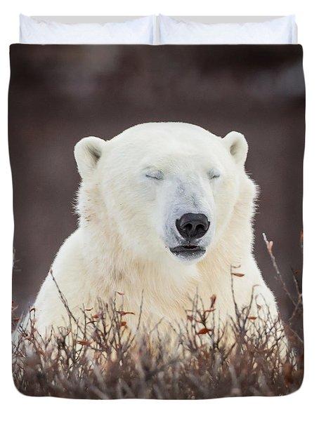 Zen Bear Duvet Cover