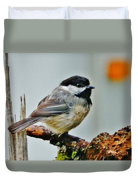 Duvet Cover featuring the photograph Zen Chickadee by VLee Watson