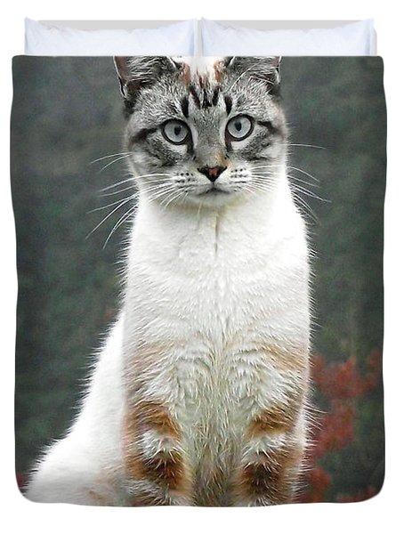 Zing The Cat Duvet Cover
