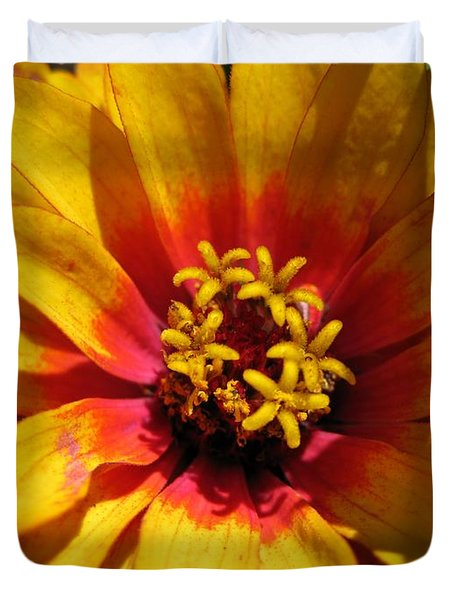Zinnia Named Swizzle Scarlet And Yellow Duvet Cover by J McCombie