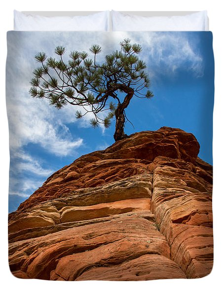 Zion Cypress Duvet Cover by John Daly